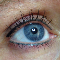 ogen800
